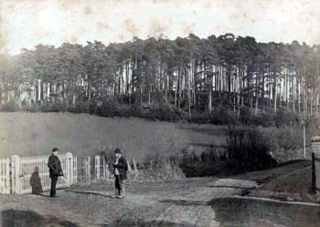 Wednesdon about 1900 - the boundary with Husborne Crawley ran, and runs, through here