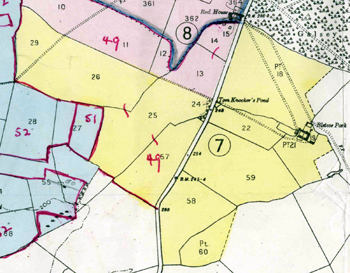 Bletsoe Park Farm shown in yellow in 1950 [X392/21/2]