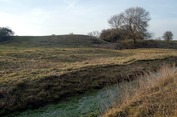 The motte and baileys March 2010