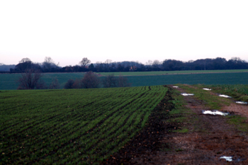 Looking north from Mill Road to the site of Netherstead December 2009