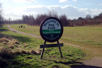 Dog Field Community Woodland February 2008