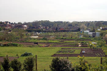 Heath and Reach allotments from Birds Hill April 2008
