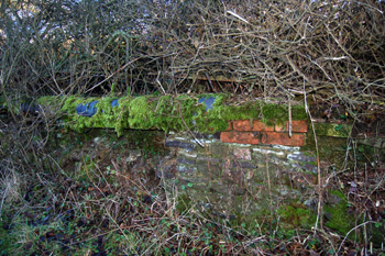 The remains of a wall in Bryants Lane January 2009