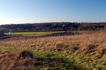 View from Bryants Lane to Stone Lane Hill Pit January 2009