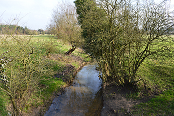 Clipstone Brook at Goose Green February 2013