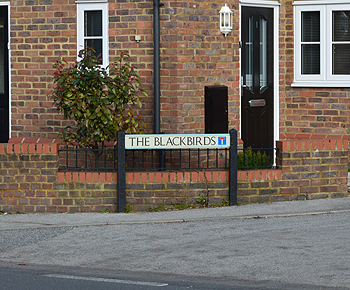 The site of the Red Lion or Blackbirds February 2013
