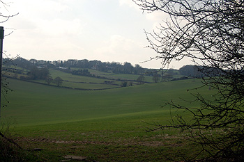 View south-west from Hollicks Lane March 2012