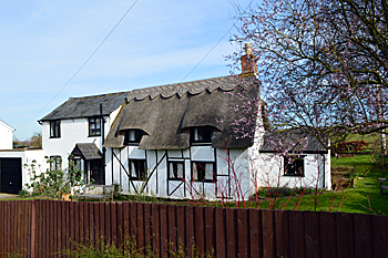 Mill Hill Cottage March 2016