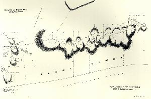 Sketch plan of Neolithic settlement on Blows Downs