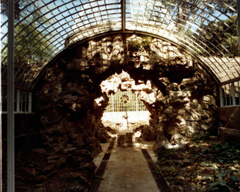 interior of grotto and fernery at Swiss Gardens 1984