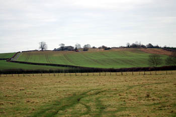Potsgrove ridge from the west January 2008