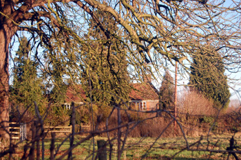 Ivy Farm from the road December 2008
