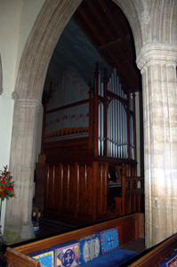 The organ January 2010
