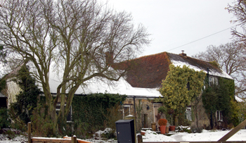 Walnut Tree Close December 2009