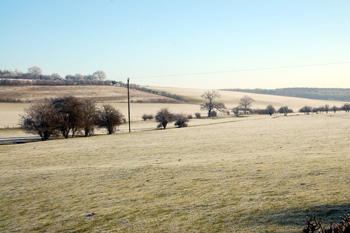Looking towards the proposed Iron Age hillfort from Hudnall Corner January 2010