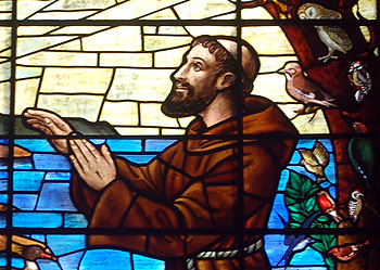 Close-up of Saint Francis in a stained glass window July 2010
